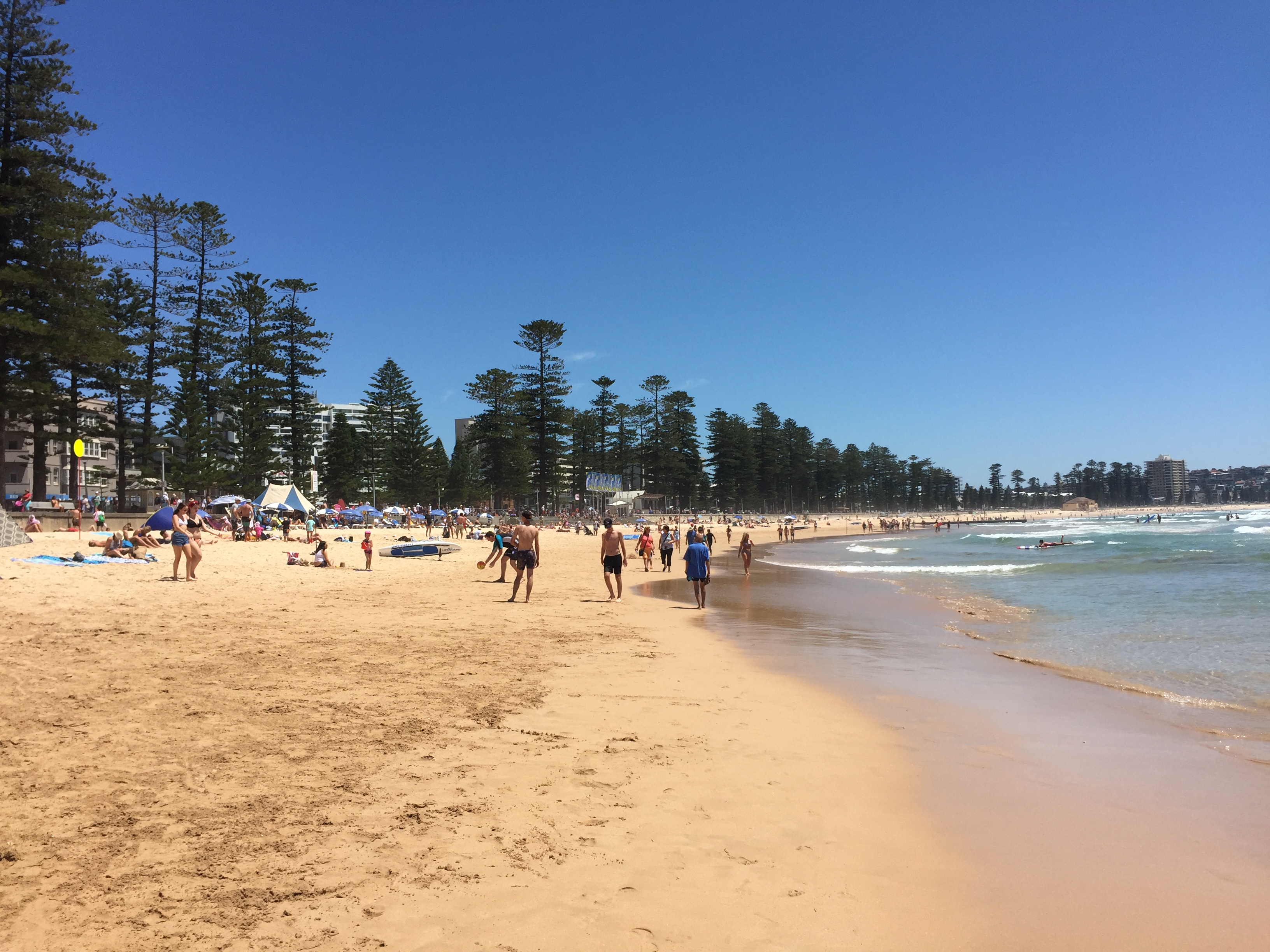 Golden sands of Manly beach